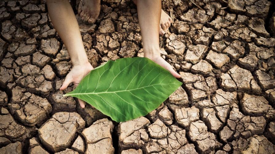 Рисковете за здравето от промените в климата застрашават постигнатото за 50 години