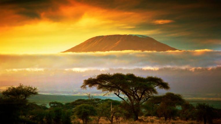 12 поговорки: Мъдростта на Африка