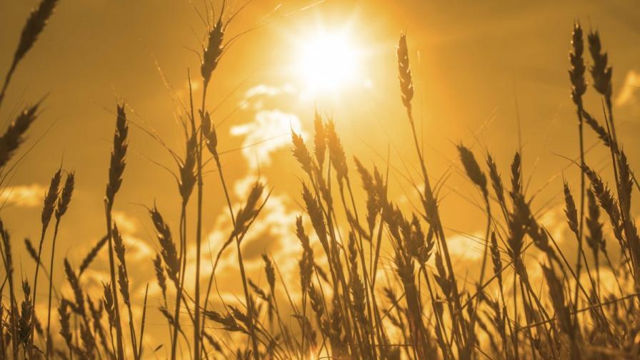 <p>Опасно горещо време над цяла България днес</p>
