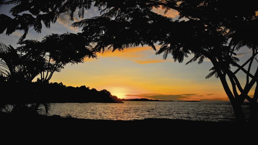 Виктория – най-голямото тропическо езеро в света