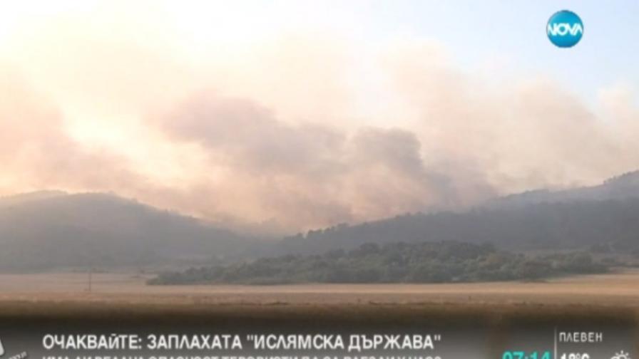 Пожарите край Драгоман и Брезник – напълно овладени