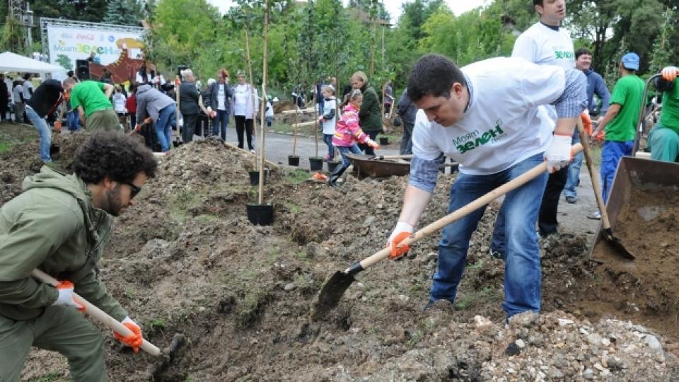 """300 дървета бяха засадени в """"Моят зелен град"""""""