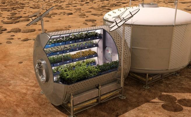 Космическото фермерство - факт не само в