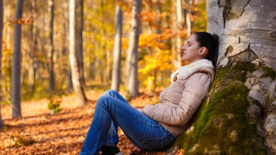 Храни срещу есенни алергии