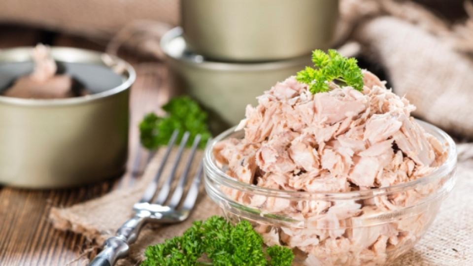 Риба тон – месо или риба?
