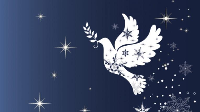 Коледа ангел гълъб надежда