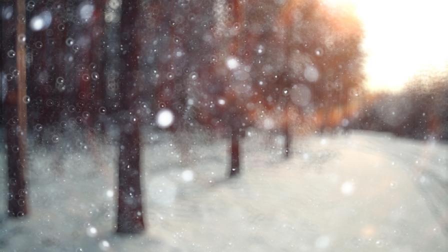 """""""Търкиш еърлайнс"""" е отменила общо 529 полета заради снега"""