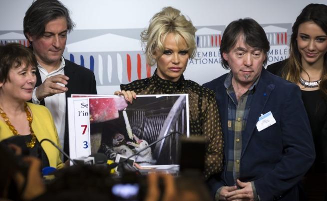 Памела Андерсън внесе смут във френския парламент