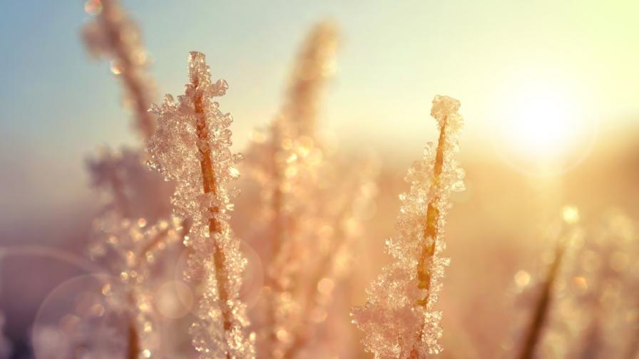 <p>Три&nbsp;прости тайни за здраве през зимата (видео)</p>