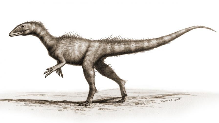 Откриха предшественика на Тиранозавър рекс