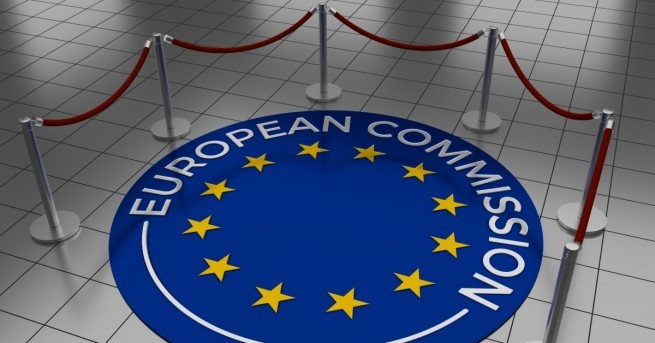Една от най-честите критики на Европейския съюз (ЕС) към ИТ