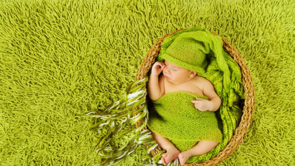 Как да изберем килим