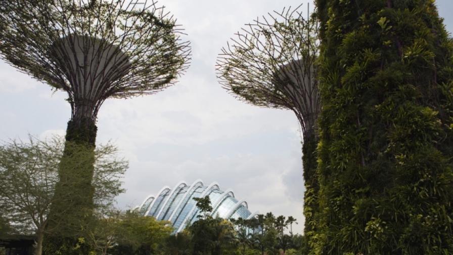 Едно място, където природата и архитектурата се преплитат