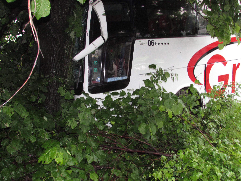 Автобусът е пътувал по направление София-Букурещ. Малко преди разклона за село Обретеник, по думите на шофьора, той е бил засечен от насрещно движещ се тир. За да избегне сблъсъка, водачът се е отклонил вдясно. Заради мокрия път автобусът е поднесъл и се е ударил в крайпътно дърво.