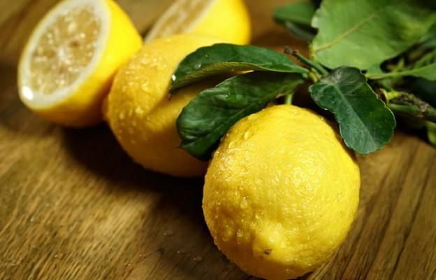 Лимоните обичат да виреят на 12 градуса и са прекрасни за много неща - определено си заслужават усилието за правилно съхранение. Къде да ги съхраняваме: на плота, ако ще ги използвате в рамките на седмица. Ако прецените, можете да удължите живота им като ги сложите в хладилника. Трайност: 1-3 седмици, като зависи от това къде ги съхранявате.