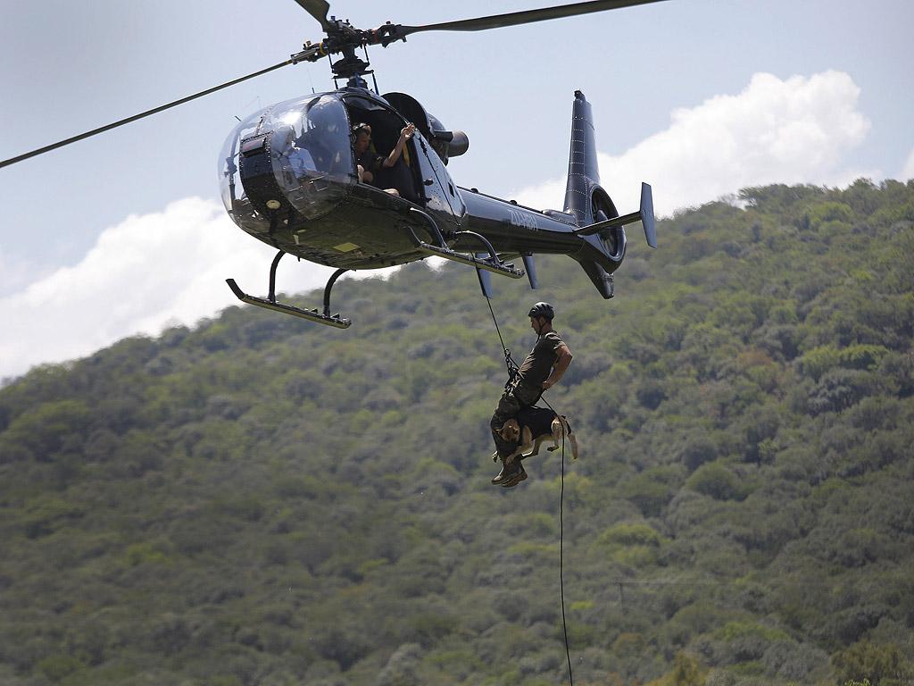 Кучета са обучени да намират огнестрелни оръжия и да се спускат от хеликоптери в преследване на бракониери.
