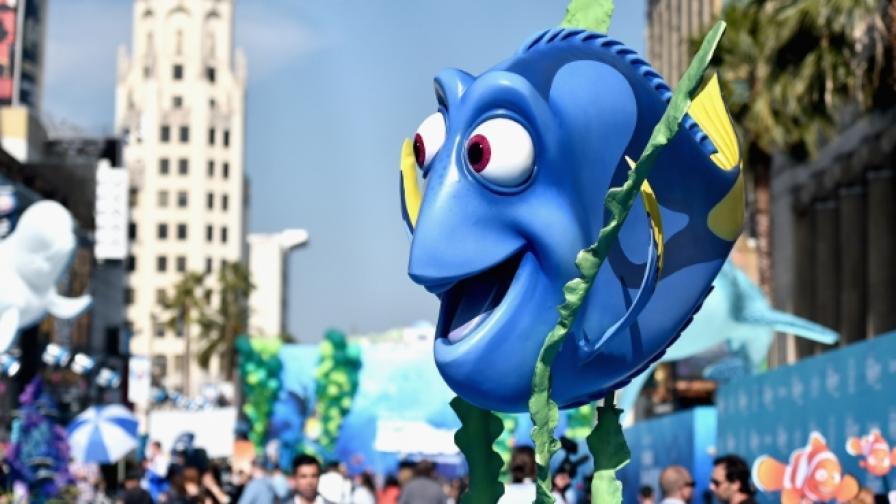 За новата синя рибка, по която полудяха малки и големи