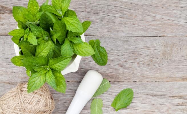 Свежите листенца, които лекуват нерви и свалят килограми