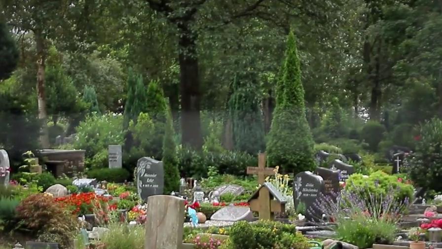 Имигрант изнасили жена на гробище в Германия
