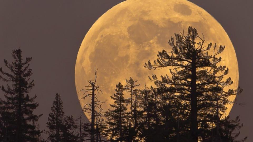 Пълнолуние във Водолей и Меркурий в Дева ще ни помагат да извадим най-доброто от себе си