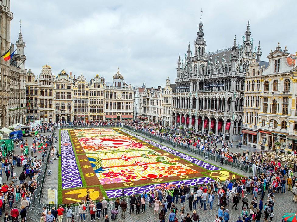 - Доброволци подреждат цветя Бегония, за да направят гигантски цветен килим на Grand Place в Брюксел, Белгия. Тазгодишната тема отбелязва 150 години от...