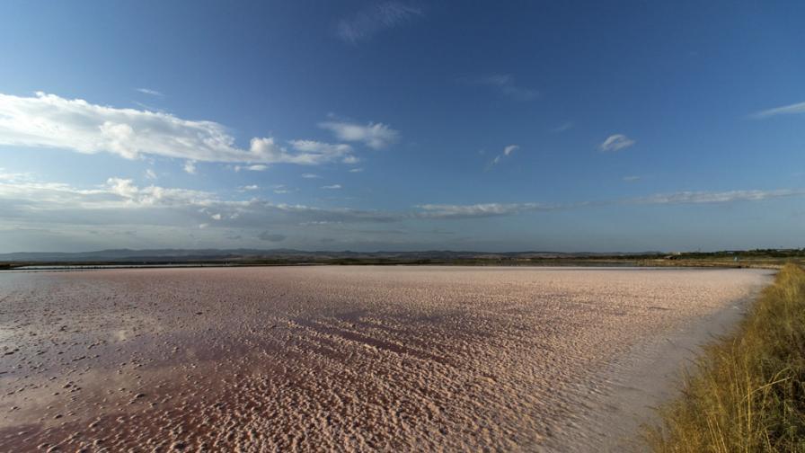 Солта на живота - разходка в бургаските солници (снимки)
