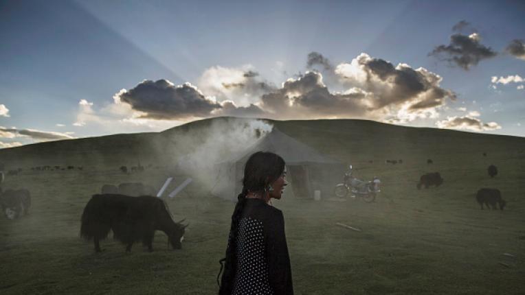 Тибетски хороскоп за всяка жена