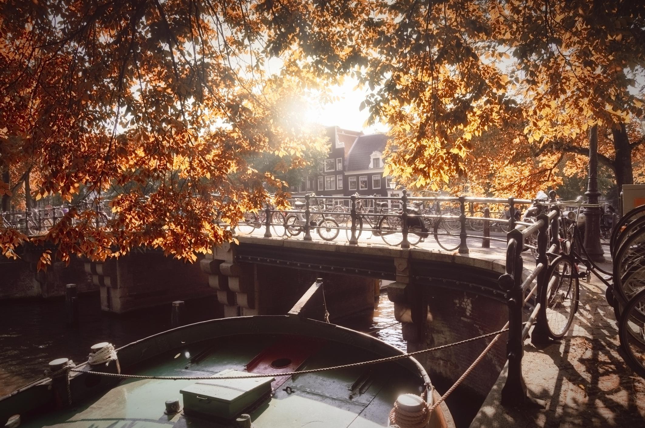 """Ех, този Амстердам. Чист, спокоен, подреден. Пълен с цветя, колела и много... любов.На всеки би му се приискало да посети този град.<br /> В него има някакъв чар. Големият художникРембрандтвори тук, аАне Франк, малката писателка, чийто дневник трогна целия свят, родена.Градът е столица на Кралство Нидерландия (Холандия).Името наАмстердамидва от Амстелердам. В превод означава """"бентнаАмстел"""", реката, преминаваща през града.Възникнал като рибарско селце в края на XII век, в резултат на развитието на търговията презНидерландския златен векАмстердам се превръща в един от най-големитепристанищни градове в света.<br /> През XIXи XXв.Амстердам се разраства и се образуват множество нови квартали и предградия.Кварталът на Червените фенери съществува на днешното си място от самото му основаване през XIV в., когато вместо кафенета, тук са се разполагали дестилационни фабрики, обслужвани предимно от моряци и търговци от различни националности.Нуждаещите се от освежаване и компания и забогатели след дългите пътувания моряци, все по-силно привличат вниманието на жените с лоша репутация.Така за кратко време луксозните публични домове, ръководени от амбициозни бизнес дами.Оставяйки малка пролука между червените завеси на стаите, гледащи към улиците, дамите подканят мъжете с леко, но предизвикателно потропване по прозорците."""