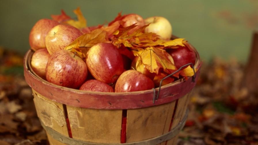 Този вкусен и полезен плод може да бъде и...