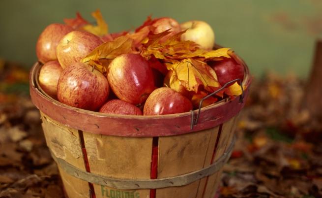 Ябълки<br /> <br /> Те са хрупкави, използваме ги в различни сладкиши и се твърди, че държат лекарите далеч от нас, но също така четвъртият най-натоварен с пестициди продукт. Независимо, че кората им е пълна с киселина, която се смята, че увеличава изгарянето на кафяви мазнини, този вкусен плод може да нанесе повече вреда на тялото ви, отколкото полза. Благодарение на пестицидите в ябълките след дълго време на консумация може да имате проблеми с метаболизма, както и с талията.