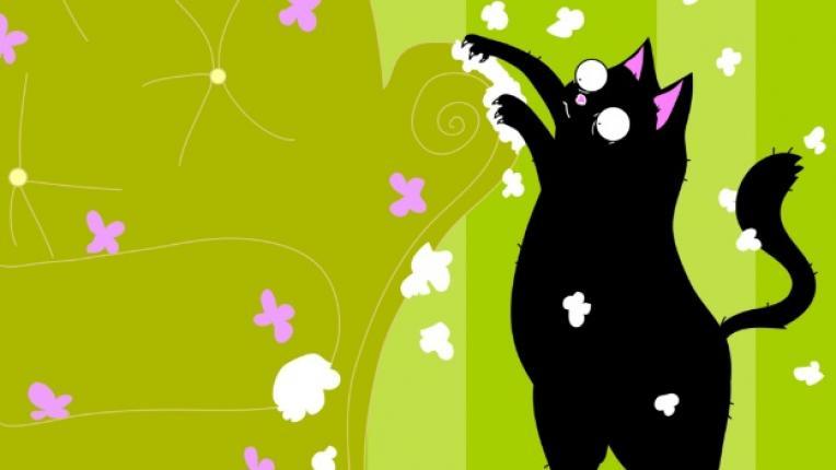 котка котки драскане