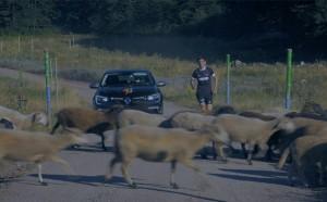 Павел Лефтеров и Дизела в уникално състезание