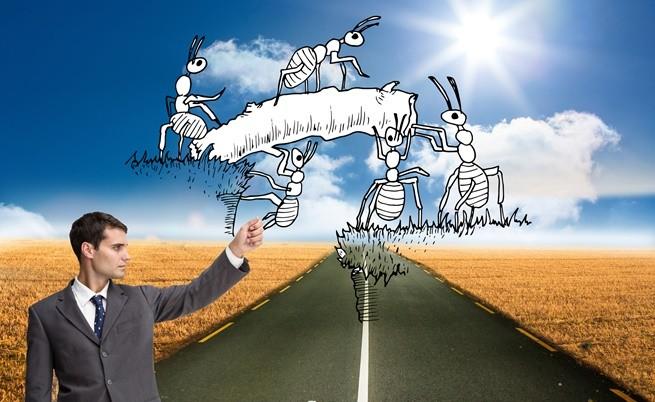 Африкански мравки създават суперколония, която може да превземе света