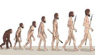 Впечатляващи находки: Хомо сапиенс се е появил 100 000 г. по-рано - Технологии | Vesti.bg