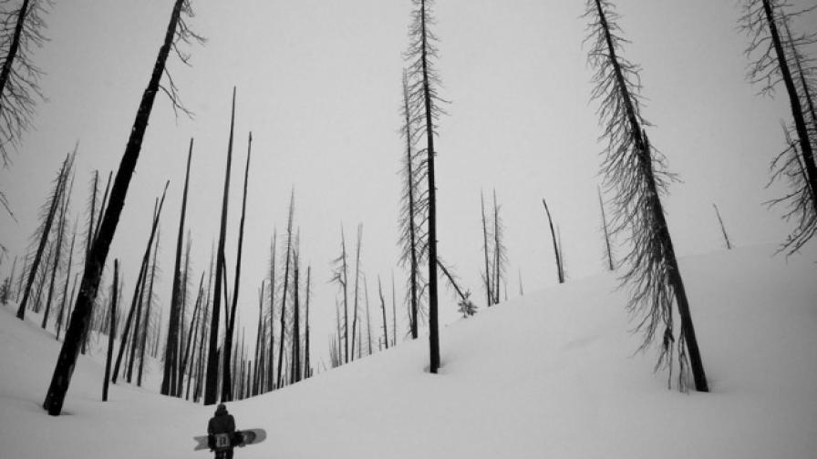 """В снежния """"рай"""" на Айдахо"""