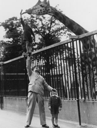 Зоопаркът в Лондон през 1950 г.