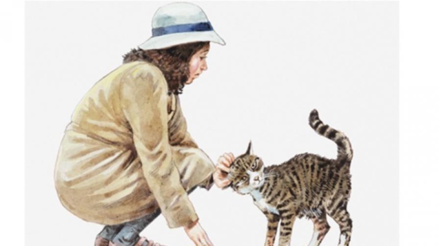 Как са се разпространили котките по света