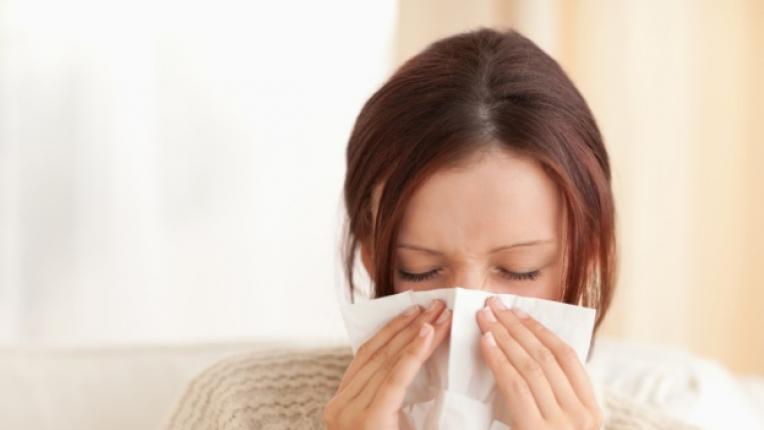 алергии спалня прах алергени козина домашни любимци