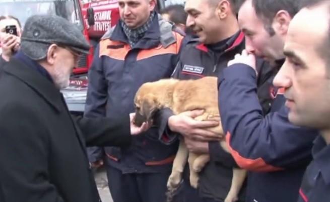 Пожарникари спасиха кученце от 70-метров кладенец