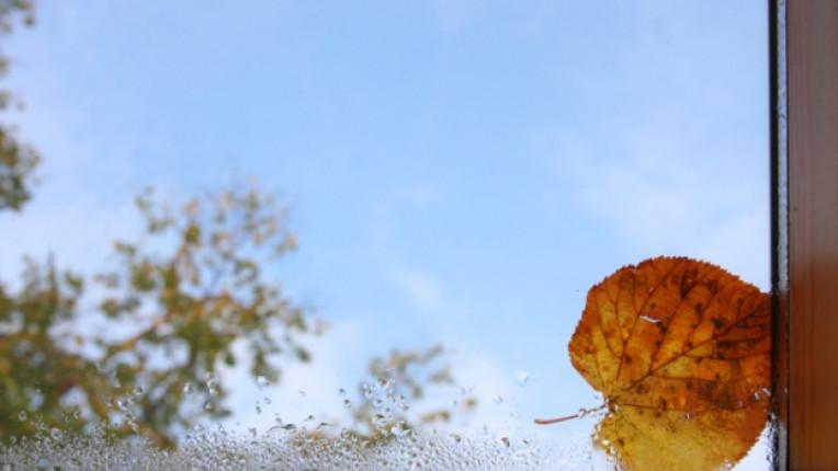 есен прозорец листо