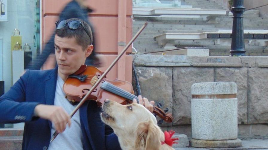 Пеещо куче събира погледи в Пловдив (видео)