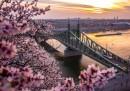 Колко ще ви струва да отидете в Перлата на Дунав