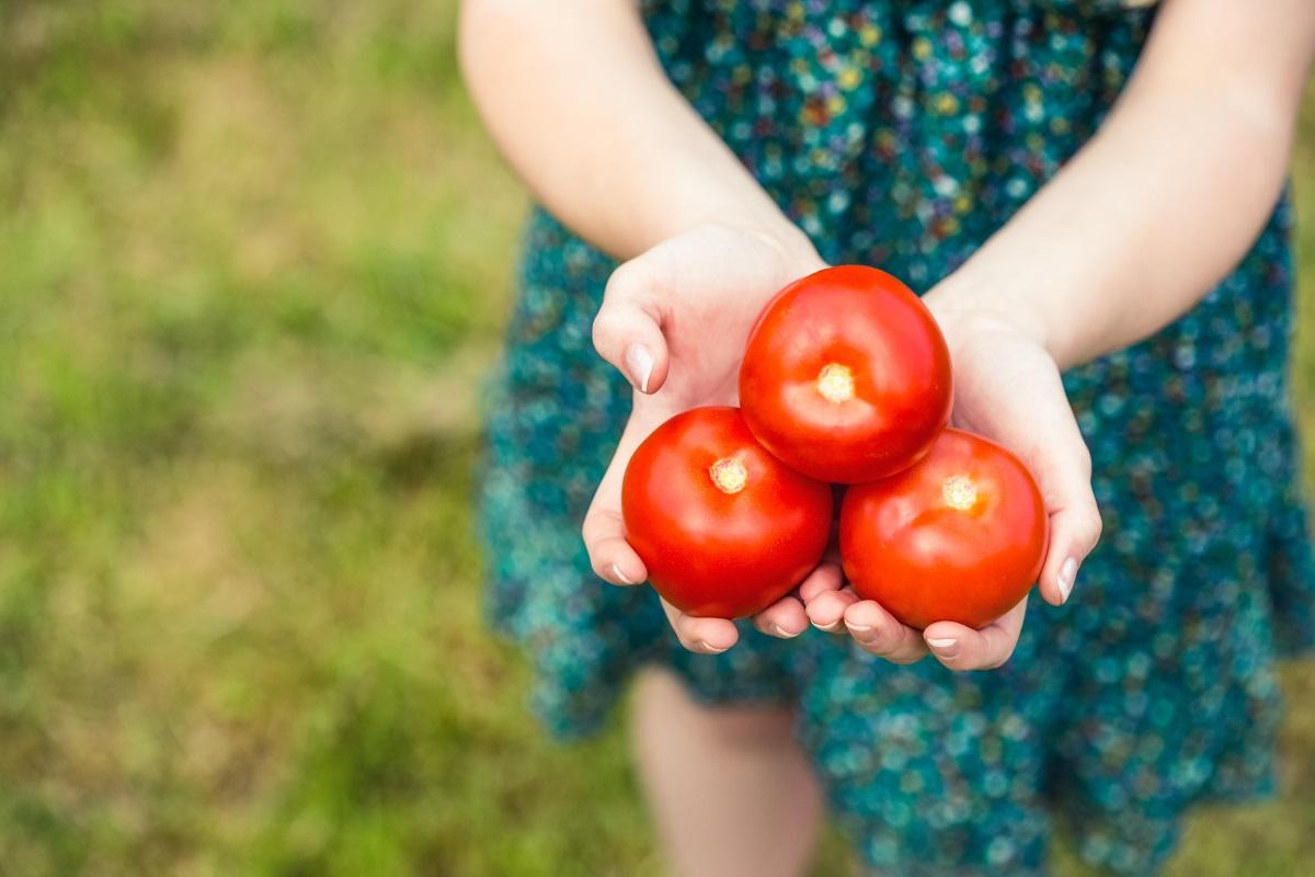 Домати - съдържат високи нива на танинова киселина, която повишава киселинността в стомаха и може да доведе до стомашни язви. Затова най-добре хапвайте домати за обяд или на вечеря.