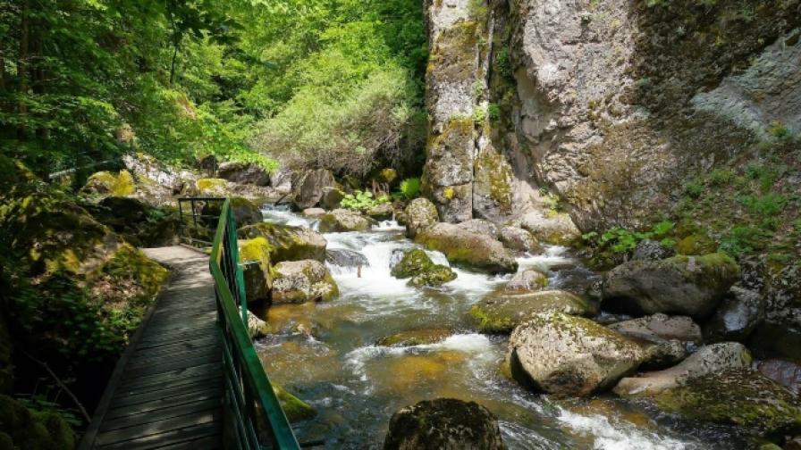 10 защитени места с изумителни гледки в Родопите