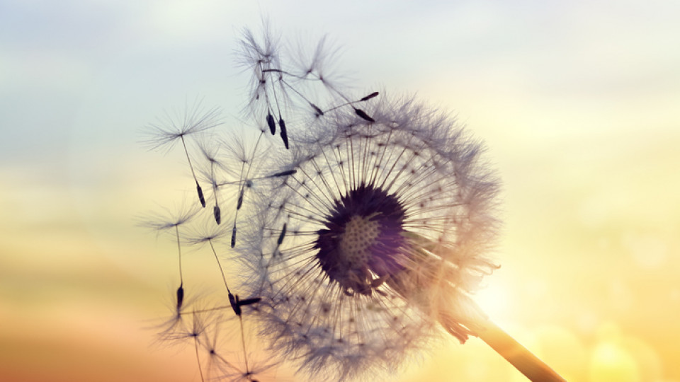 7 истини за живота, които ми се искаше да науча по-рано...