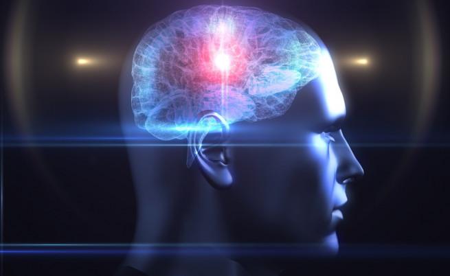 Игрите за трениране на мозъка се оказват безполезни