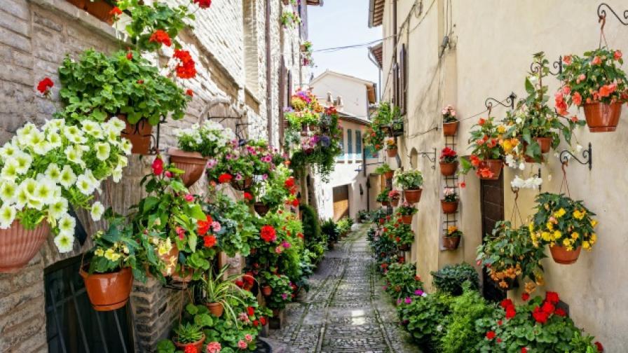 Спело, Италия