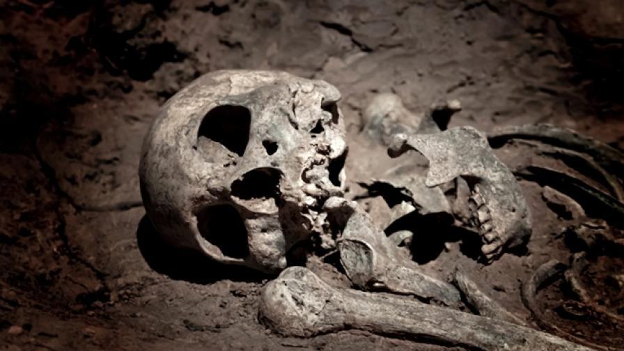 Откриха 7000 скелета под университетски кампус