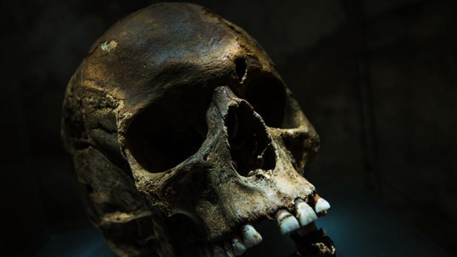 Кула от човешки черепи в Мексико озадачи археолозите