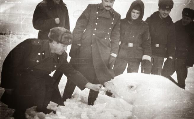 Съветски военни са наобиколили полярна мечка и я хранят.
